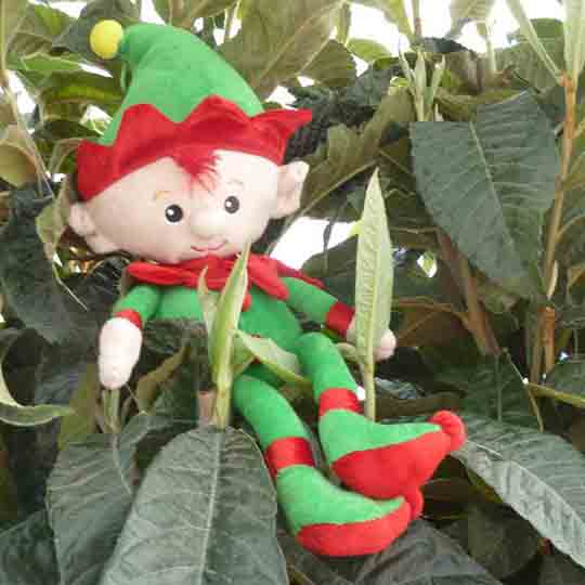Mascot for Southsea Green, a little elf