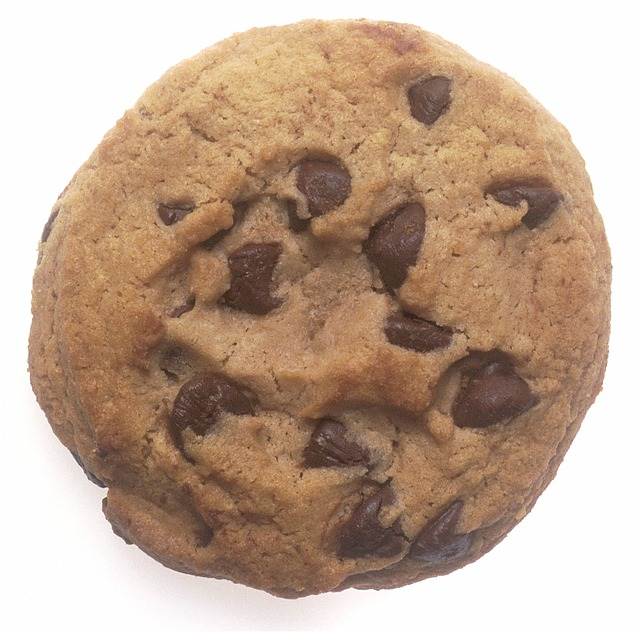 Just a picture of a cookie