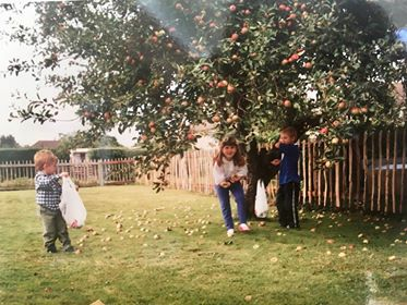 Apple picking image